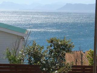 The Oystercathcer Holiday House - Kleinbaai vacation rentals
