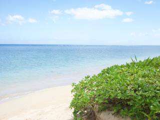 Hawaii Beachfront Cottage - Hauula vacation rentals
