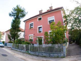Guest Hause Pikapolonca Apartments - Maribor vacation rentals