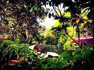 The Owl house. Une suite privée avec terrasse. - Platanillo vacation rentals