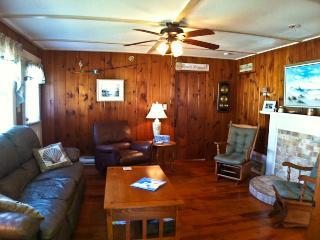 Walk to Village, Close to Raycroft & Inman Beaches, 2 ACs, WIFI - - DE0628 - Dennis vacation rentals