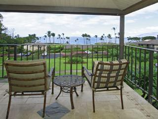 Beautiful Condo with Hot Tub and DVD Player - Wailea vacation rentals
