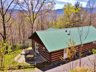Close by Cabin, Black Mountain, Montreat 3BR Views - Black Mountain vacation rentals