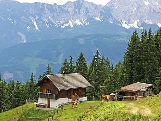 Wassertheureralm - Presseggersee vacation rentals