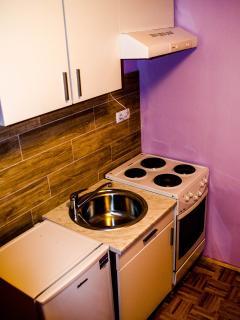 Cozy 2 bedroom Maribor Condo with Linens Provided - Maribor vacation rentals