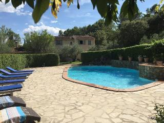 Charming Provencal house with pool in Lorgues - Lorgues vacation rentals