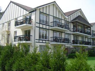 appartement 3* piscine, tennis , dans résidence standing-Hôtel du Parc - Hardelot Plage vacation rentals
