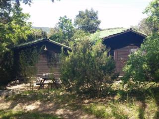 Bungalows dans la forêt avec piscine - Plan de la Tour vacation rentals