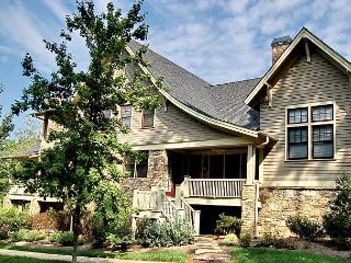 Beautiful House with Internet Access and A/C - Black Mountain vacation rentals