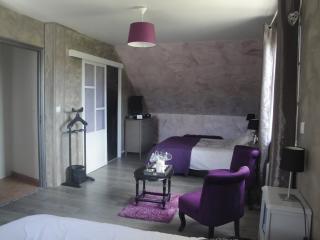 Chambre familiale Margaux avec accès piscine - Brugny Vaudancourt vacation rentals