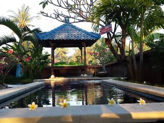 Private Villa with Pool and tropical Garden - Kaliasem vacation rentals