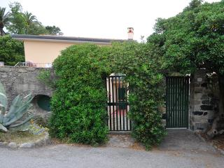 SEA FRONT VILLA CHIOCCHIOLA WITHOUT SEA VIEW - Monterosso al Mare vacation rentals