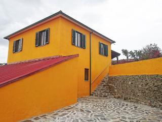 Douro Valley - Casa Vale do Douro - Lamego vacation rentals