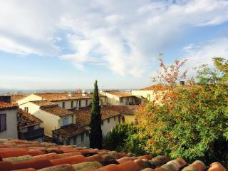 Splendid Duplex Historical Center - Aix-en-Provence vacation rentals