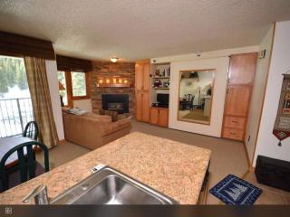 Ski In/Ski Out Studio Condo Fully Updated Sleeps 4 - Winter Park vacation rentals