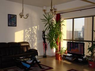 Perfect apartment by the beach - Dubai vacation rentals