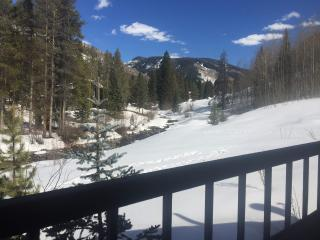 Vail  Secluded Cabin, one of a kind views! - Vail vacation rentals
