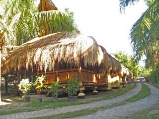 Subida Vacation Homes - Bamboo Uno - Dumaguete City vacation rentals