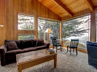 Dog-friendly oceanfront home w/ gorgeous views, a private hot tub & shared pool! - Sea Ranch vacation rentals