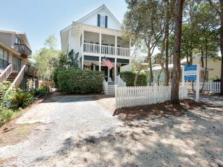 Gorgeous 4 bedroom Seagrove Beach House with Internet Access - Seagrove Beach vacation rentals