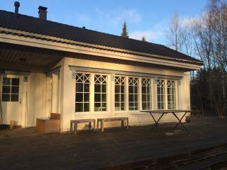 Beautiful villa 119 sqm in the village 92 km - Karjalohja vacation rentals