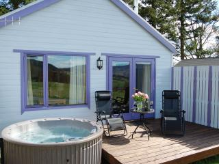 Spa Lodge - Pitlochry vacation rentals