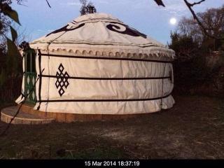 Original Mongolian YURT @ Longleat - Horningsham vacation rentals