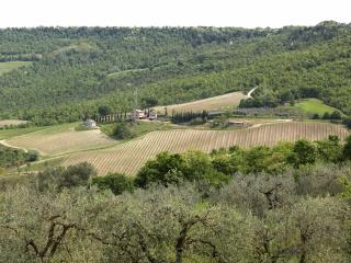 Independent country house part of winery - Orvieto vacation rentals