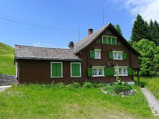 Bendel - Krummenau vacation rentals
