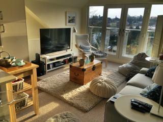 Modern, light, penthouse apartment near London - Hemel Hempstead vacation rentals