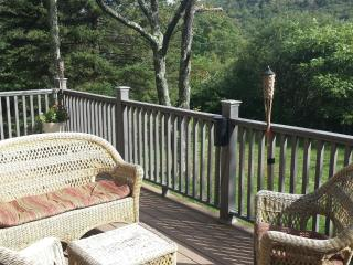Cozy 1 bedroom Fleischmanns Cabin with Deck - Fleischmanns vacation rentals