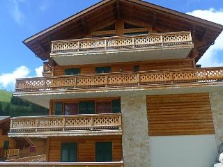 Bright 1 bedroom Condo in Val D'illiez with Internet Access - Val D'illiez vacation rentals