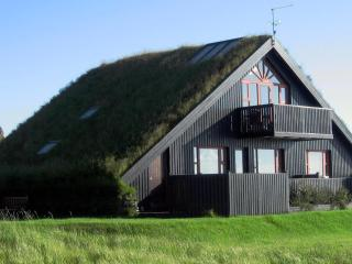 Wonderful 4 bedroom Villa in Selfoss with Television - Selfoss vacation rentals