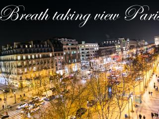 Up to 6 DREAM  view Champs Elysees  balconies - Paris vacation rentals
