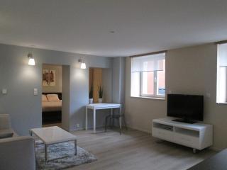 "APPARTEMENT 40 m² "" RESIDENCE DU PARC"" - Belfort vacation rentals"