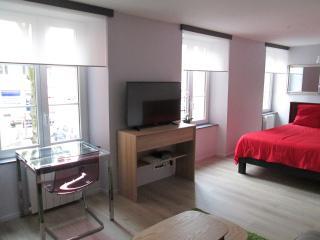 "STUDIO 30 m² ""RESIDENCE DU PARC"" - Belfort vacation rentals"
