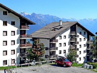 Beautiful 1 bedroom Apartment in Nendaz with Short Breaks Allowed - Nendaz vacation rentals
