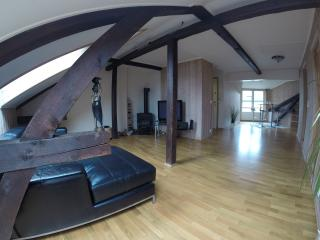 Large room in a spacious downtown loft apartment - Oslo vacation rentals
