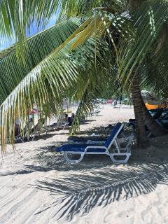 Charming Condo with Internet Access and Balcony - Paynes Bay vacation rentals