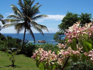 Fully equipped house with an incredible view #4 - Calibishie vacation rentals