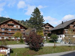 Saanen (Utoring) - Schönried vacation rentals