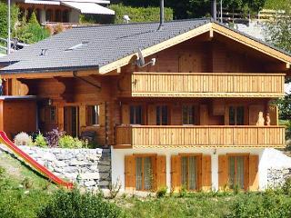 Voltaire - Ovronnaz vacation rentals