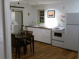 Nice 1 bedroom Condo in Boone with Internet Access - Boone vacation rentals