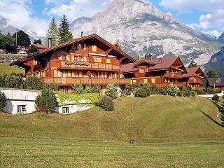 Sunny 1 bedroom Vacation Rental in Grindelwald - Grindelwald vacation rentals