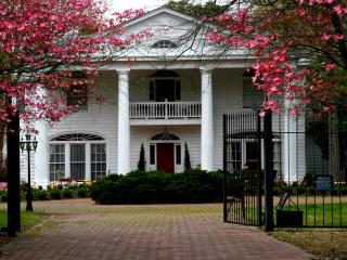 Historic Mansion - Spacious Interiors & Gardens - Richmond vacation rentals