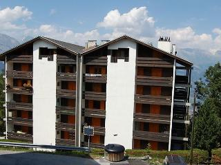 Haut de Cry 24 - Nendaz vacation rentals