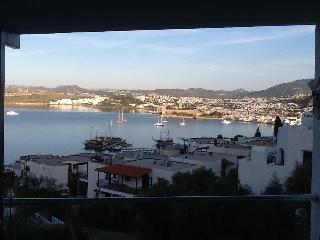 Best view best location quiet and sunny - Bodrum vacation rentals