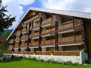 Sunny 2 bedroom Condo in Gryon - Gryon vacation rentals
