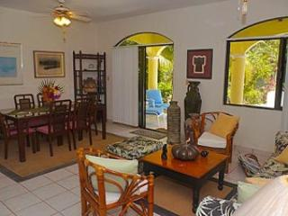 Perfect Apartment with Housekeeping Included and Television - Akumal vacation rentals