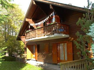 Sunny Condo with Internet Access and Dishwasher - Val D'illiez vacation rentals